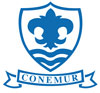 St Mary's C of E School Logo